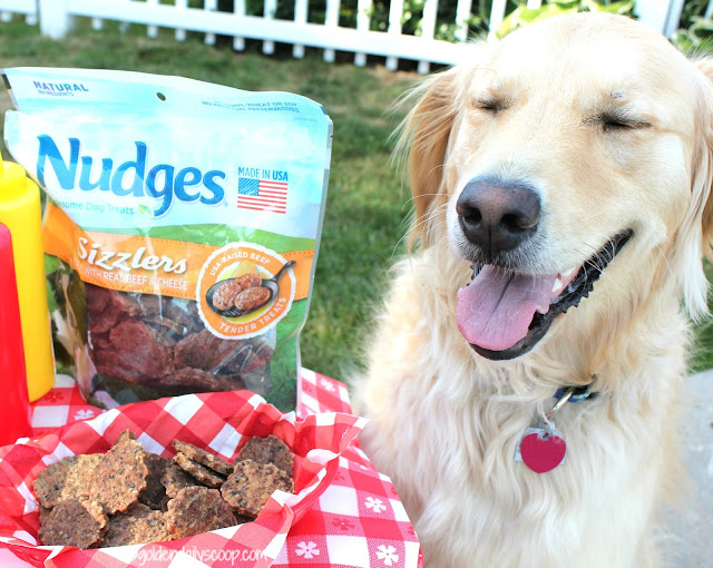 Nudges Sizzlers real beef and cheese dog treats review