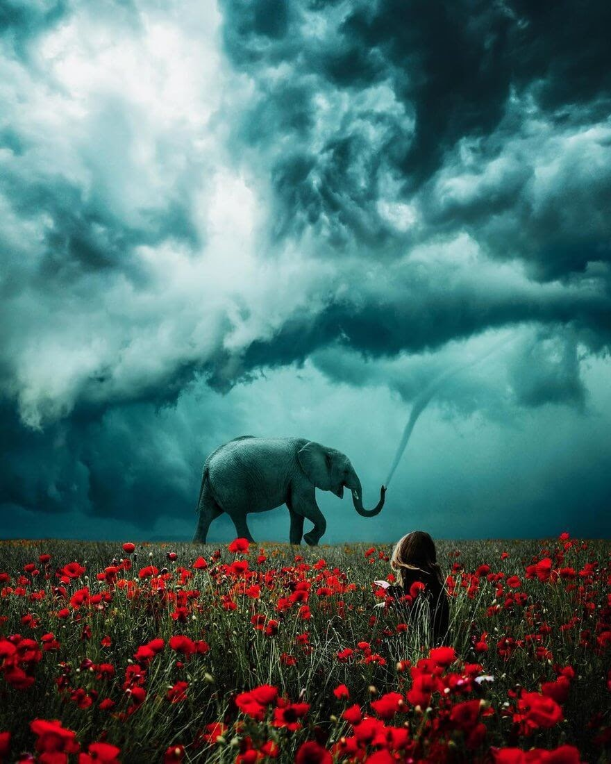 09-Elephant-Trunk-Tornado-Ted-Chin-Photos-of-Worlds-and-Realities-in-Surrealism-www-designstack-co