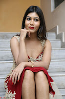 Rachana Smit in Red Deep neck Sleeveless Gown at Idem Deyyam music launch ~ Celebrities Exclusive Galleries 007.JPG