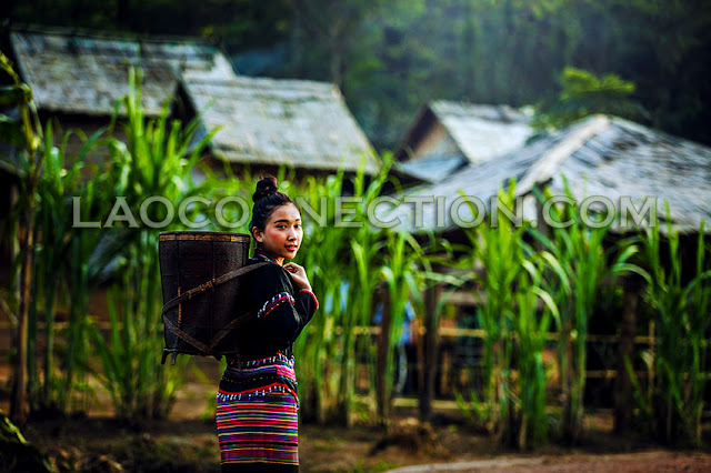 Young Lao ethnic minority woman carrying a basket