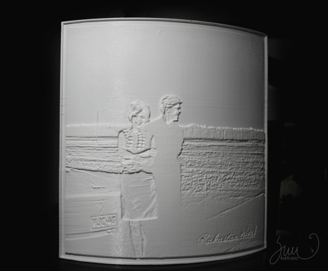 Kuultokuva.fi, DataNorppa, 3D-printing