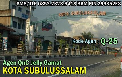 Agen QnC Jelly Gamat Kota Subulussalam