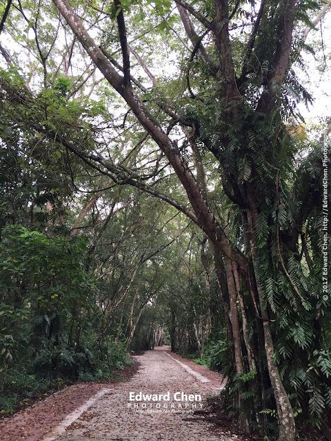 Taman Alam trail