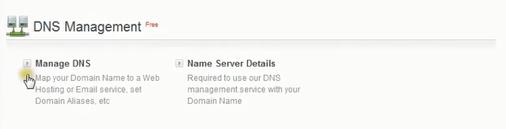 bigrock DNS dashboard