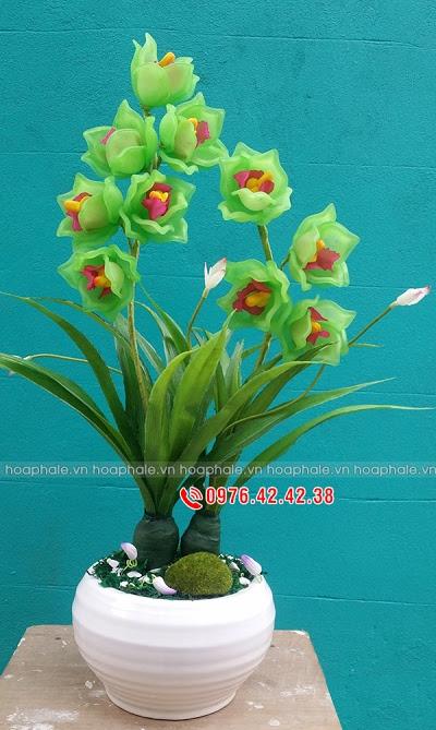 Hoa da pha le o Nghia Tan