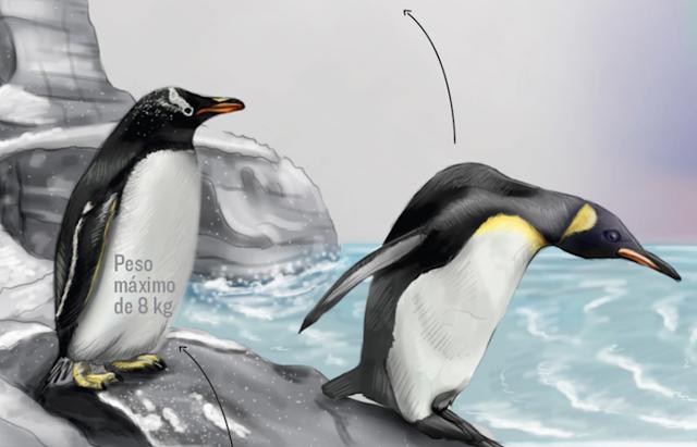 Infografia periodistica y dise o gr fico as es son las for Precio oceanografic valencia 2016