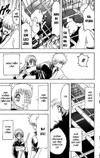 Gintama Chap 144 page 15 - Truyentranhaz.net