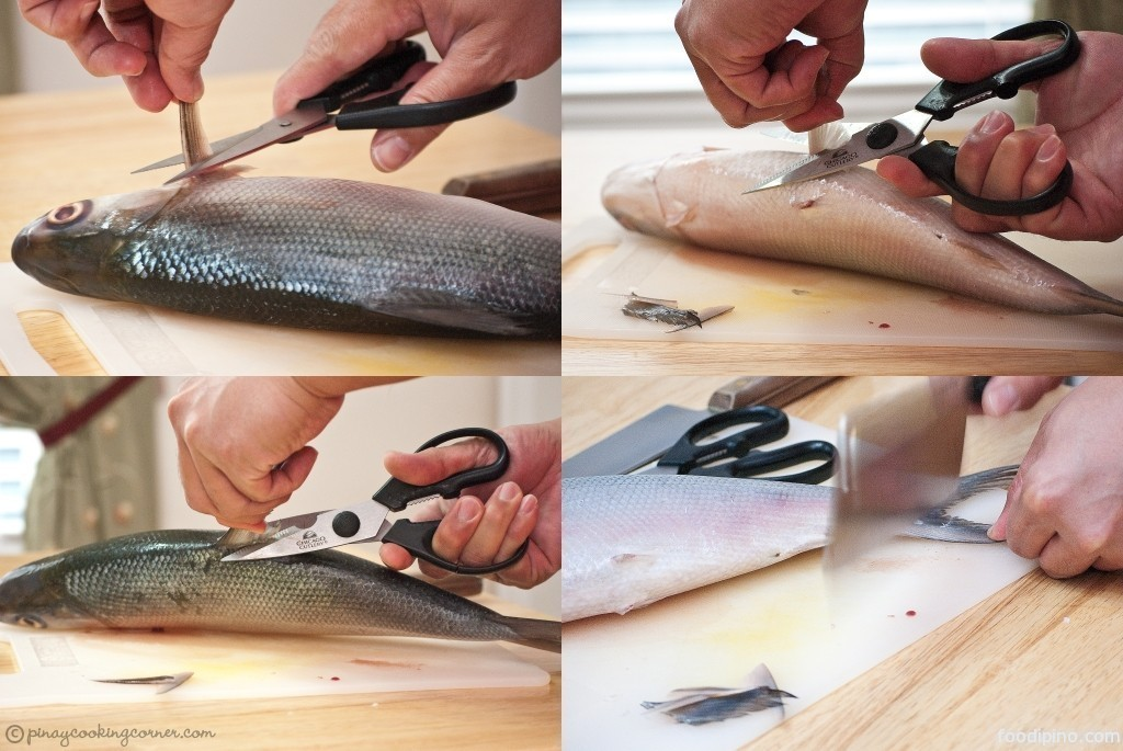 how to fillet a fish easy