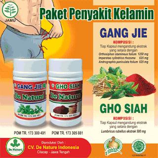 https://de-natur-indonesia.blogspot.com/2018/03/obat-kencing-nanah-paling-laris-di-apotik-umum.html