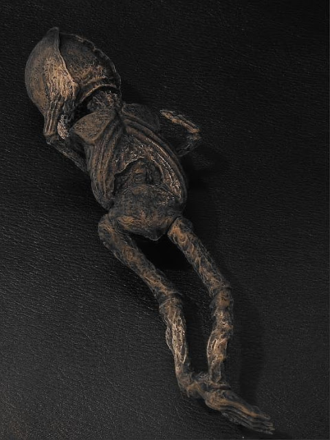 Mummified Alien Discovered in Russia, Body Being Studied.... WAIT! Now goes missing??? Time%2Btravel%252C%2BTardis%252C%2Bovni%252C%2BUFO%252C%2BUFOs%252C%2Bsighting%252C%2Bsightings%252C%2Balien%252C%2Baliens%252C%2BKyshtym%252C%2BRussia%252C%2BSETI%252C%2Bnews%252C%2Bnavy%252C%2Bvolcano%252C%2Barea%2B51%252C%2Bdead%252C%2Bcrash%252C%2BJustin%2BBieber%252C%2Bcloak%252C%2Bclinton%252C%2Bdeath%252C%2Bnellis%2BAFB%252C%2Bdoctor%2Bwho%252C%2Bbody%252C%2B5