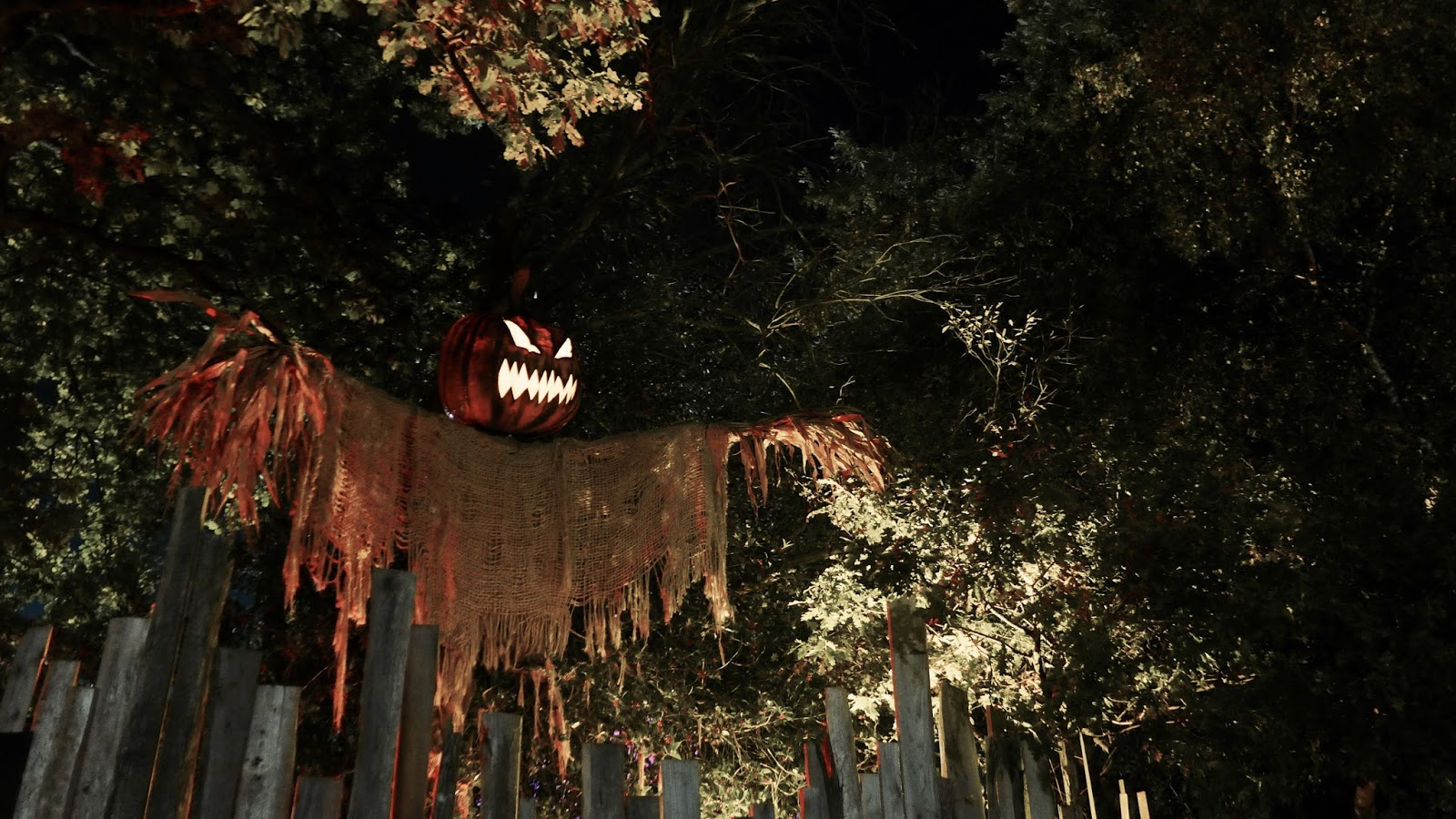My Most Anticipated Halloween Attractions 2017 - Cupcakes and Coasters