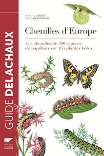 guide pour identifier les chenilles