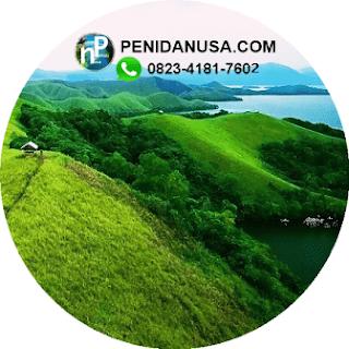 Teletubbies Nusa Penida