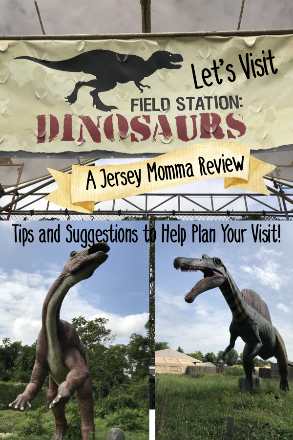 Field Station Dinosaurs: Review, Tips and Suggestions for