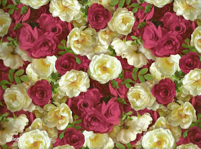 Beautiful Roses. Artistic: 6 Gambar Latar Terindah - Amazing Wallpapers
