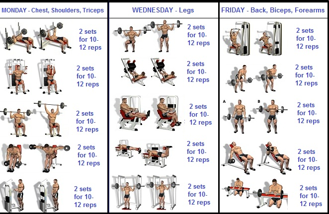 how to build muscle quickly with a 3 day a week routine all