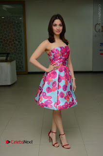 Actress Tamanna Latest Images in Floral Short Dress at Okkadochadu Movie Promotions  0148.JPG