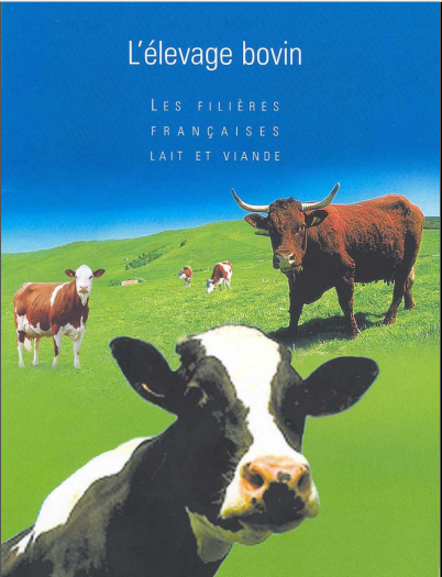 l'élevage bovin - Les filières françaises lait et viande -WWW.VETBOOKSTORE.COM