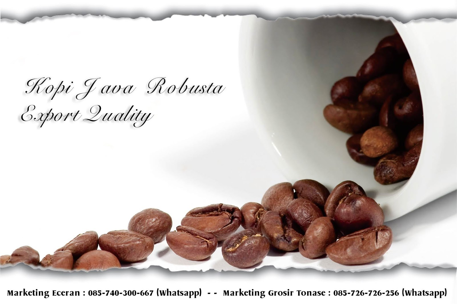 Jual kopi semarang, jual kopi bubuk semarang, jual kopi arabika semarang, jual kopi robusta semarang, grosir kopi semarang, distributor kopi semarang
