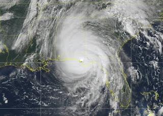 Hurricane Michael survivors