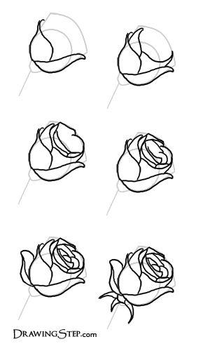 Referensi Dan Tutorial Menggambar Beberapa Jenis Bunga Blog Blahbloh