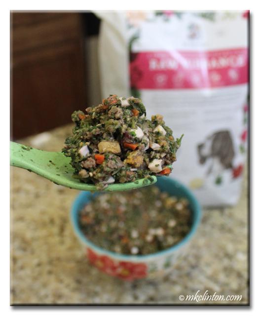 Raw Vibrance dog food on a spoon