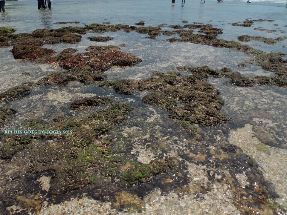 Wisata ke Jogja Murah | JOS Tours & Travel