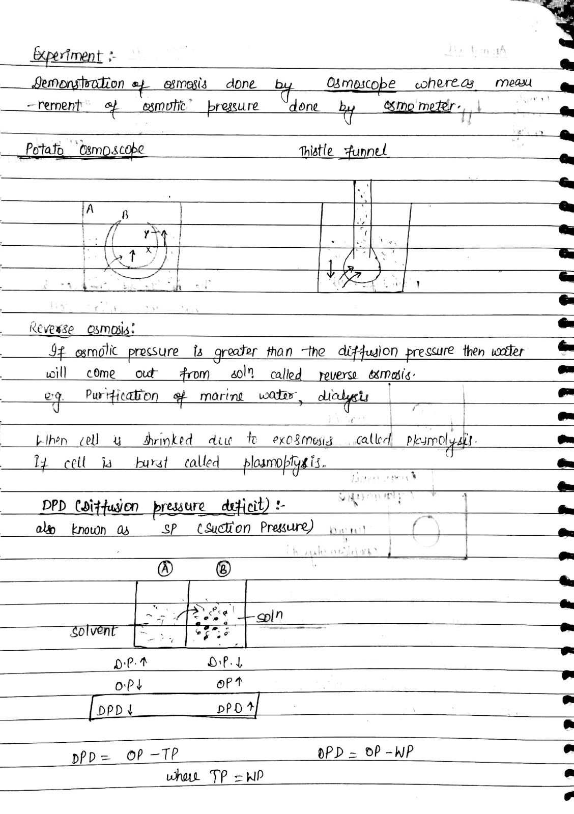 Revision Notes for CBSE Class 11 Biology Chapter 11 - Free PDF Download