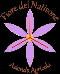 fiore del natisone logo