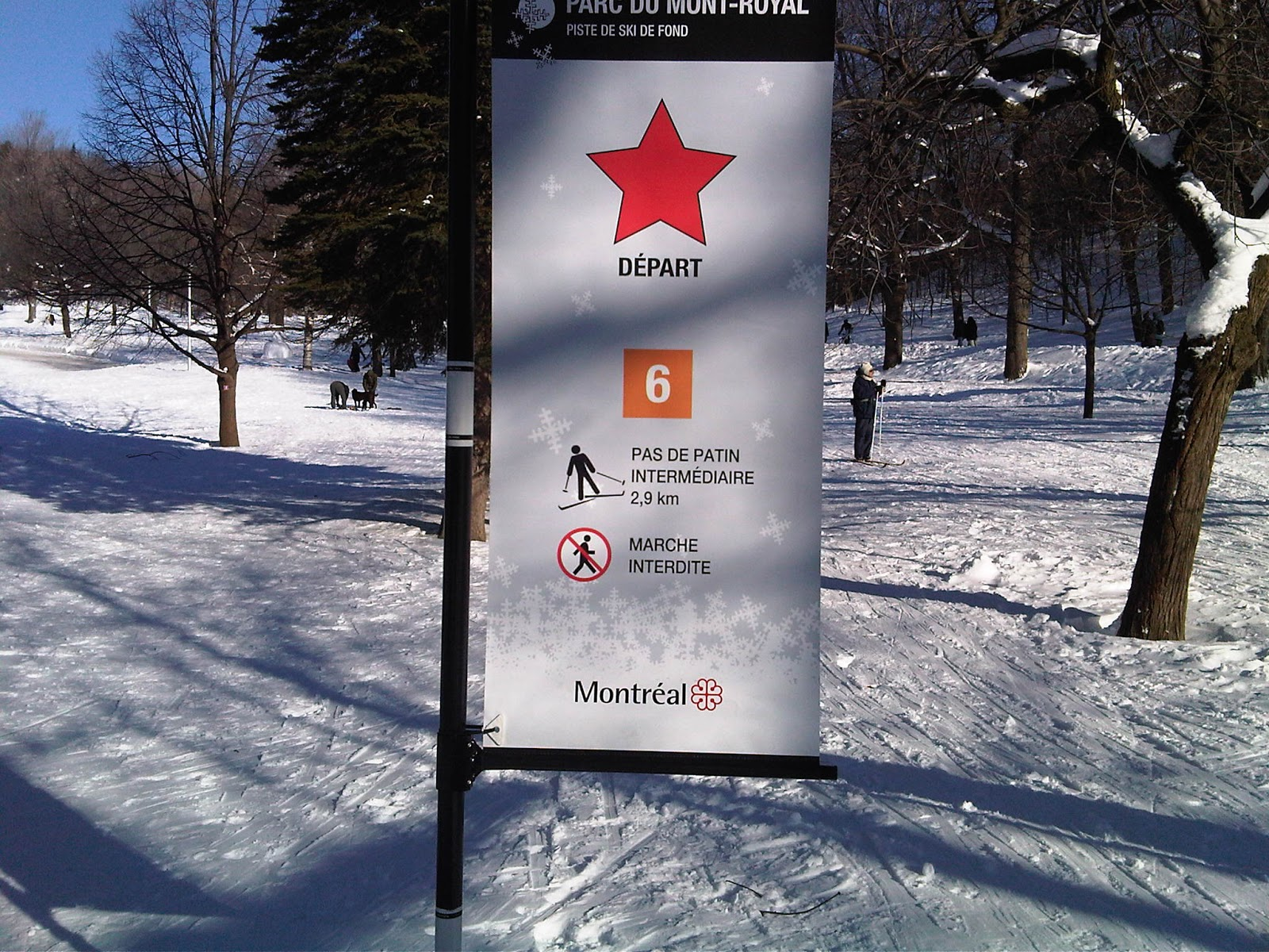 recherche skis de skating