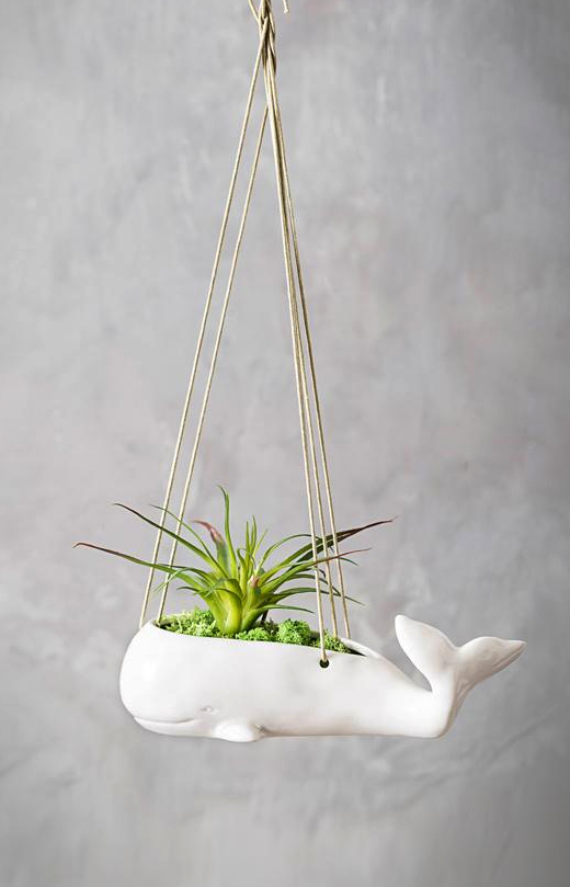 Whale Hanging Planter