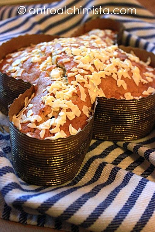 Colomba Sprint Senza Glutine con Cioccolato e Arancia Candita