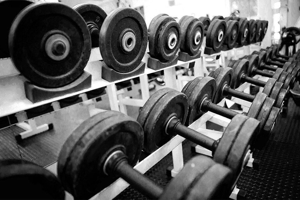 Pesos de musculação. Foto: Divulgação