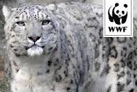 CALENDARIO WWF 2016: AIUTIAMO LE SPECIE IN VIA DI ESTINZIONE