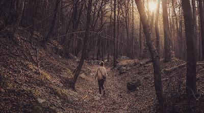 Chica solitaria caminando por el bosque relajante
