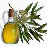 aceite-del-arbol-del-te-usos-beneficios
