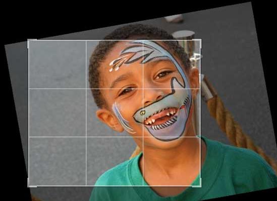 Panduan Belajar Fotografi Dasar Bagi Pemula Hingga Menghasilkan Uang