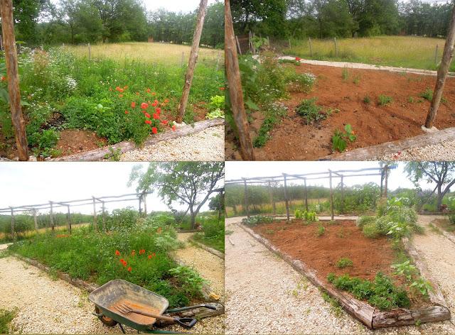weeding gardens