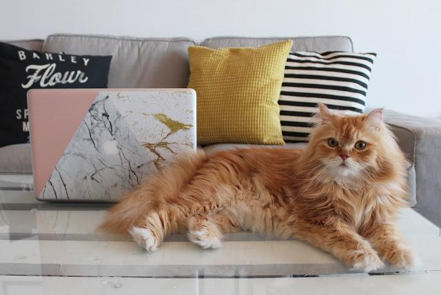 CaseApp Macbook Marble Cat