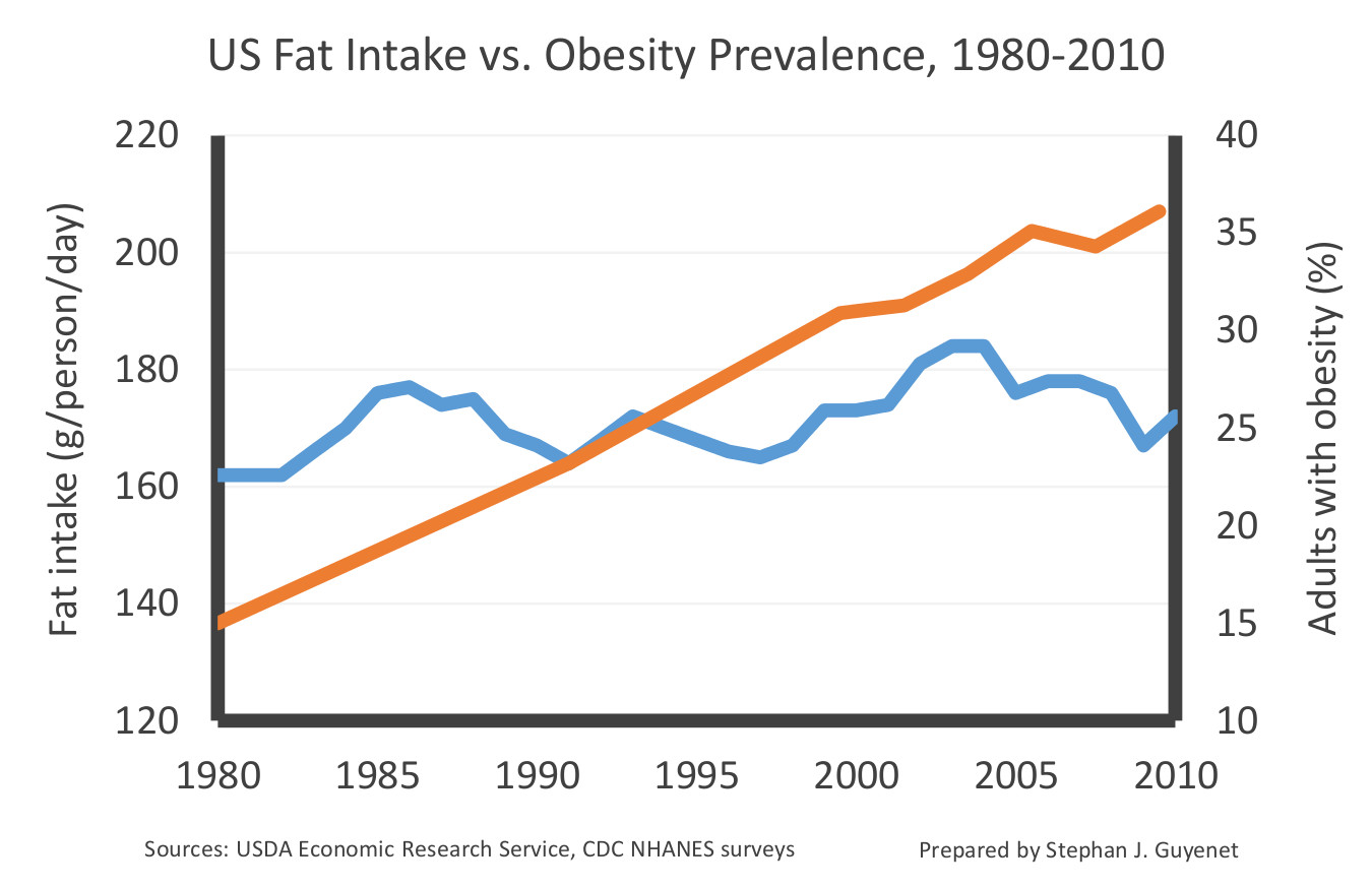 is there a relationship between fast food and obesity