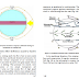 Tương tác biển và khí quyển Khu vực nhiệt đới Ấn độ -Thái bình dương (Đinh Văn Ưu)