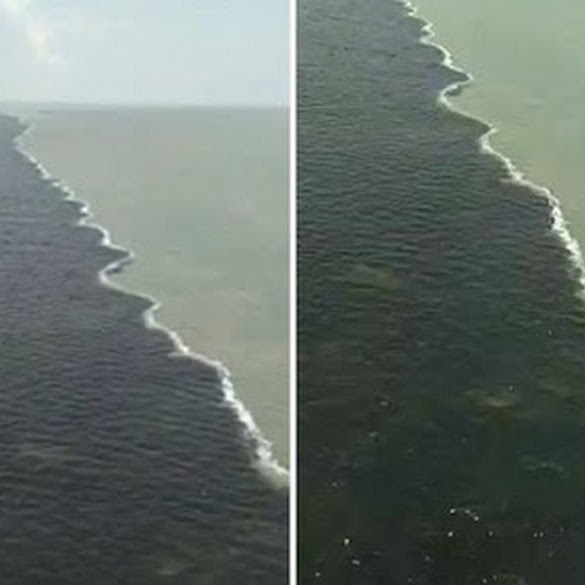 Viral Warganet Sebut Laut di Bawah Jembatan Suramadu Terbelah Jadi Warna Hitam-Putih