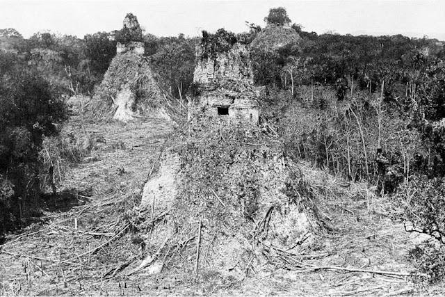 Fotografías antiguas ruinas mayas - Alfred Maudslay