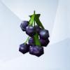 список растений в симс 4 садоводство,