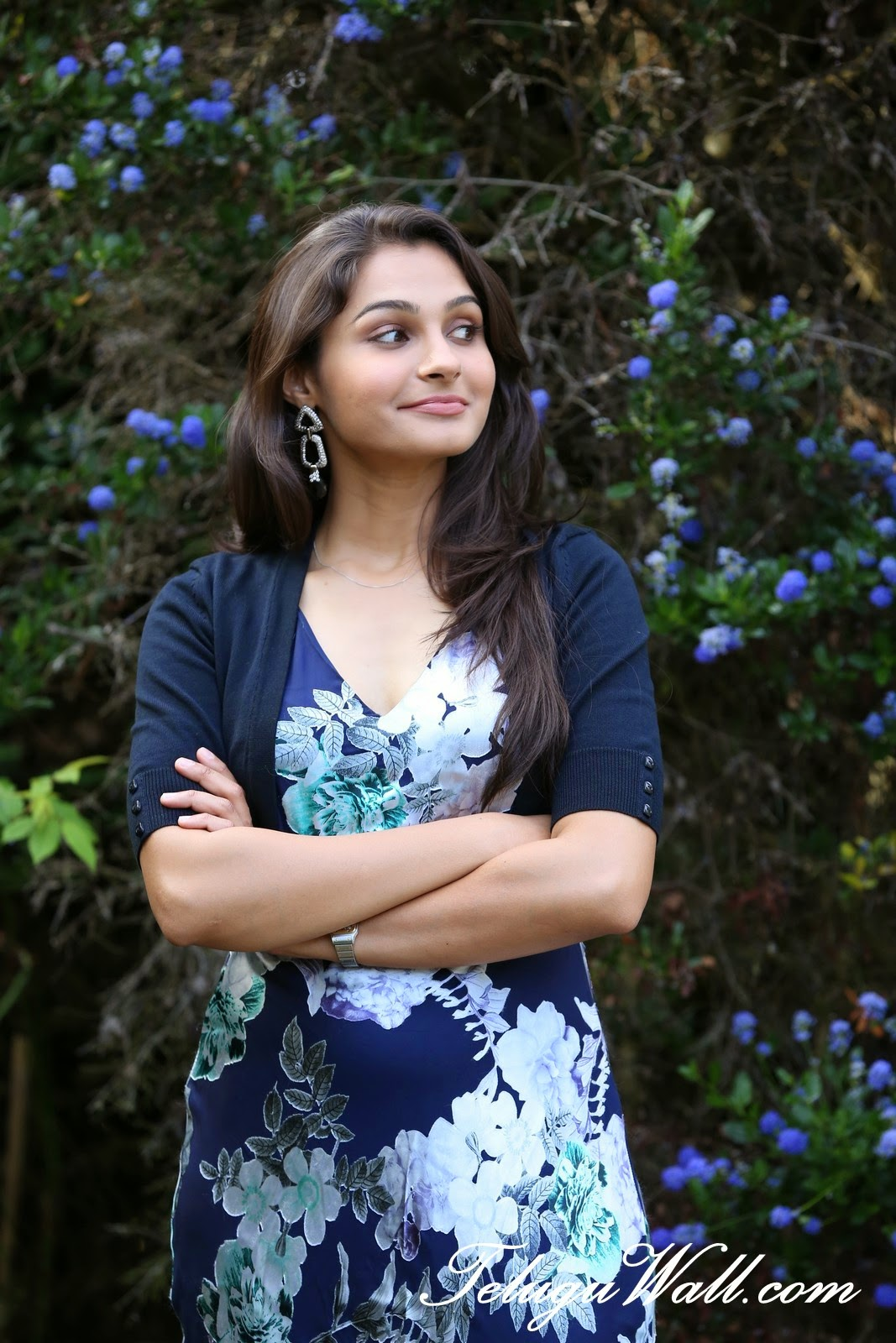 Cute Indian Actress Hd Wallpapers Andrea Jeremiah Posters