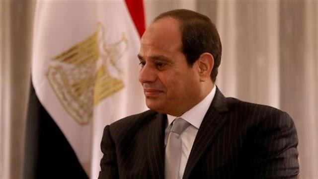 Egypt's President Abdel-Fattah el-Sisi says Cairo backs Syrian forces