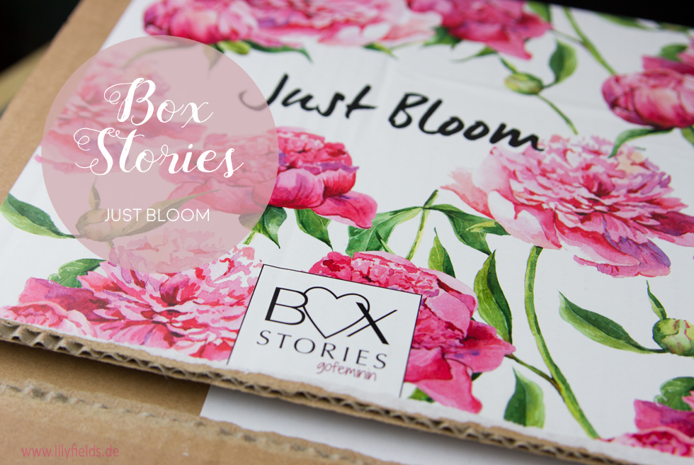 Box Stories - Just Bloom