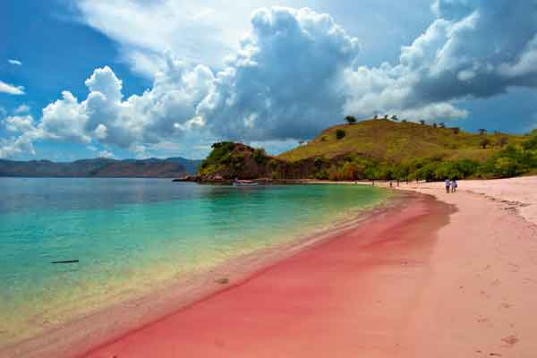 Mengapa Ada Pantai Berpasir Merah Muda?