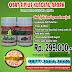 Distributor Obat Kencing Nanah Ampuh Di Pangkalpinang