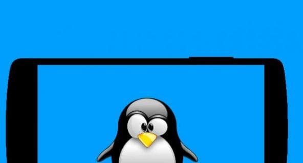 Masa Lalu dan Masa Depan Kernel Linux Pada Perangkat Seluler